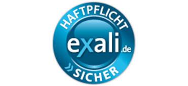 Triades Datenschutz Datensicherheit Exali Siegel